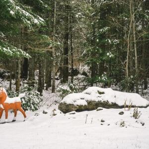 Photoreportage «La vie de rang» par Betty Bogaert<br />Source : Betty Bogaert, étudiante en Photographie