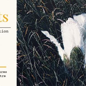 Lancement de la revue Imagin'Arts, le venderdi 9 décembre à 17 h au Tank-à-y-Être.<br />